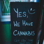 How to Start a Cannabis Business: The Steps Explained